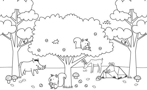 Paisaje De Otoño Con Animalitos  Dibujo Para Colorear E Imprimir