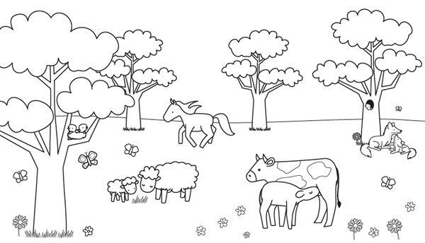 Animales En El Campo  Dibujo Para Colorear E Imprimir