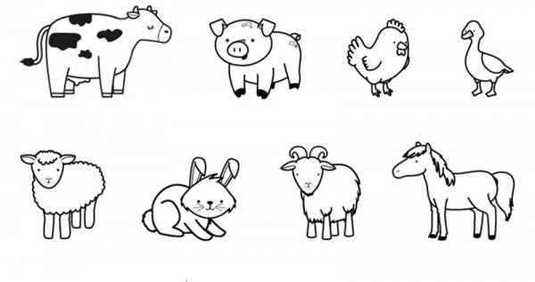 Animales De La Granja  Dibujo Para Colorear E Imprimir