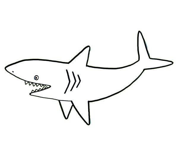 Tiburón  Dibujo Para Colorear E Imprimir