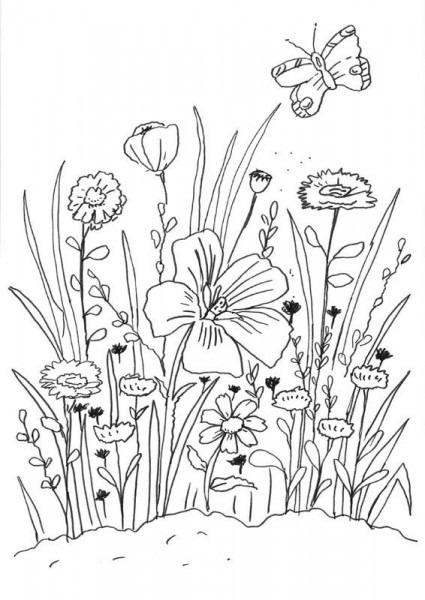 Flores Y Mariposa  Dibujo Para Colorear E Imprimir