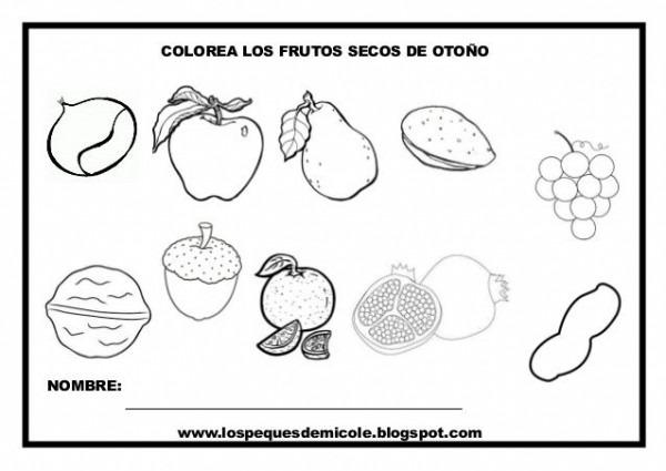 Colorea Los Frutos Secos De OtoÑo Nombre  Www Lospequesdemicole