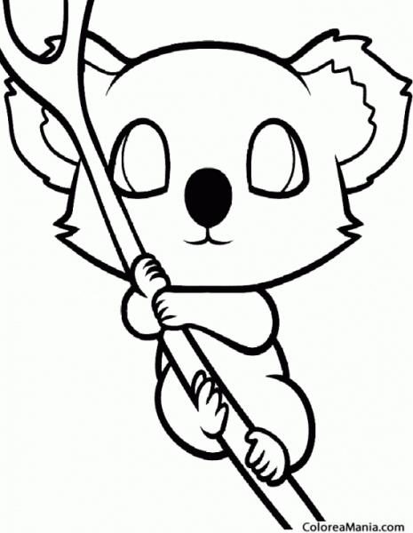 Colorear Koala Bien Agarrado (animales Del Bosque), Dibujo Para