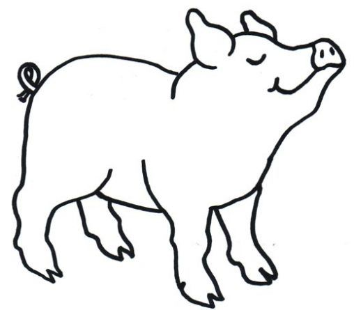 Dibujo Infantil De Cerdo Para Colorear