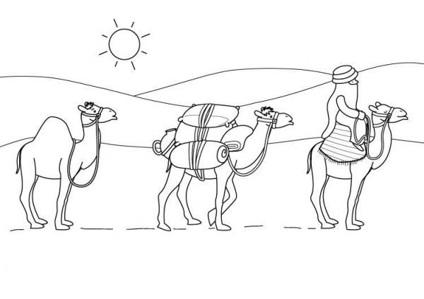 Dibujos Para Colorear El Desierto