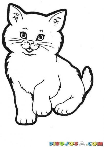 Pintar Gato