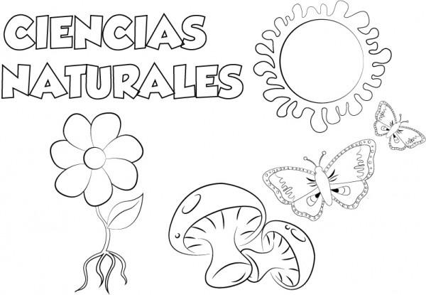 Dibujo Ciencias Naturales Para Imprimir Y Colorear