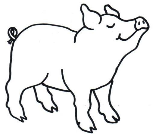 Dibujo De Cerdo Para Colorear  Dibujos Infantiles De Cerdo