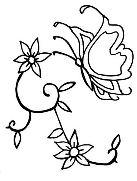 La Mariposa Y Las Flores