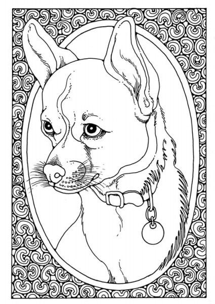Dibujo Para Colorear Retrato De Perro