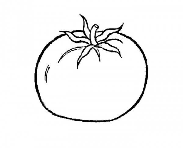 Dibujos De Tomates Para Colorear E Imprimir03