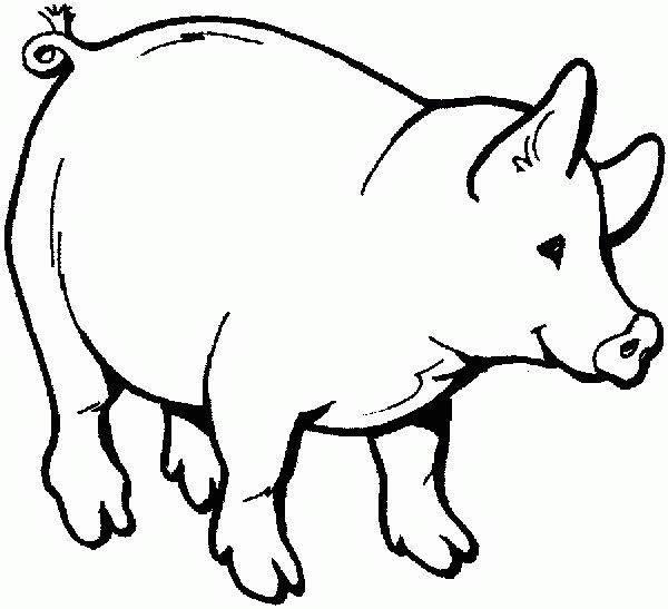 Cerdo  20 (animales) – Páginas Para Colorear