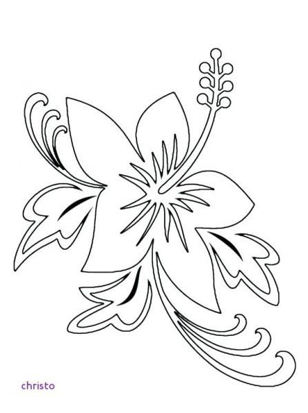 Dibujos Hawaianos Para Colorear