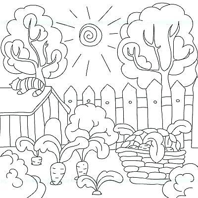 Dibujos De Jardines Para Colorear