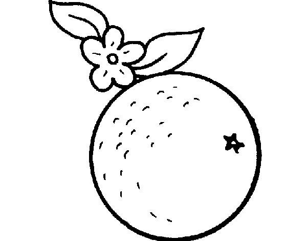 Dibujo De Naranja Pintado Por Leitomp En Dibujos Net El Día 20