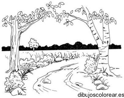 Dibujo De Un Paisaje De árboles