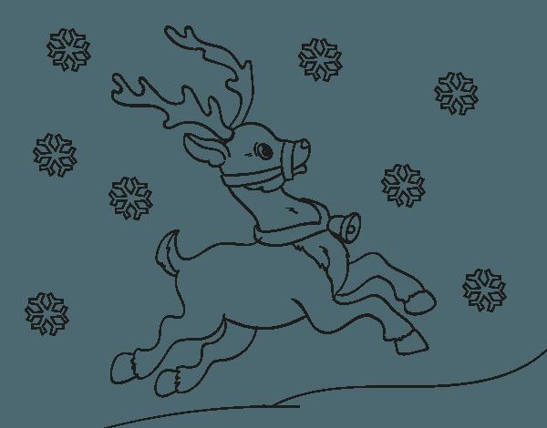 Dibujo De Reno De Navidad Para Colorear