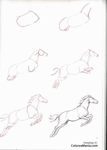 Colorear Dibujar Caballo Saltando (como Dibujar Un Caballo
