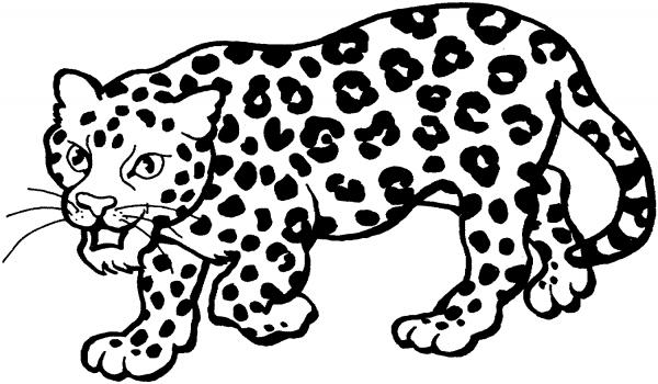 Dibujos De Bebé Leopardo Para Colorear, Pintar E Imprimir