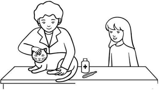 Veterinario De Gatos Para Pintar Y Colorear