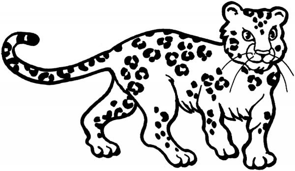 Leopardo  4 (animales) – Páginas Para Colorear