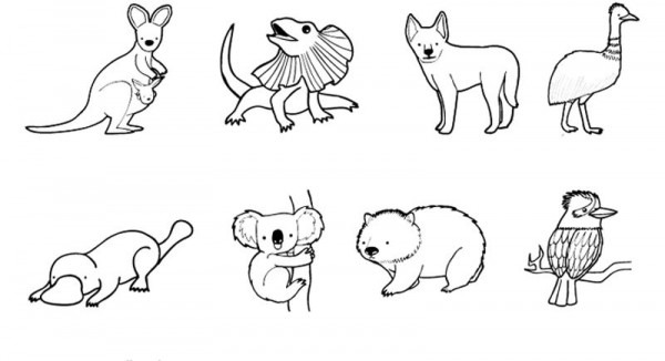 Animales De Australia  Dibujo Para Colorear E Imprimir