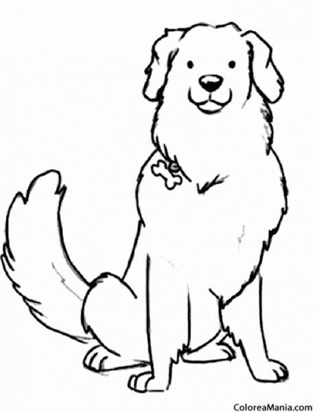 Colorear Perro Pastor (animales Domésticos), Dibujo Para Colorear