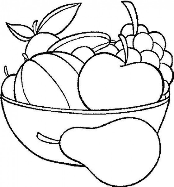 All Fruits And Flowers To Paint