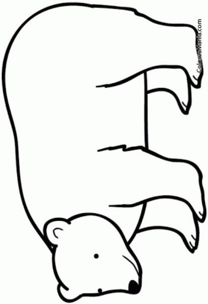 Colorear Oso Polar 9 (animales Polares), Dibujo Para Colorear Gratis