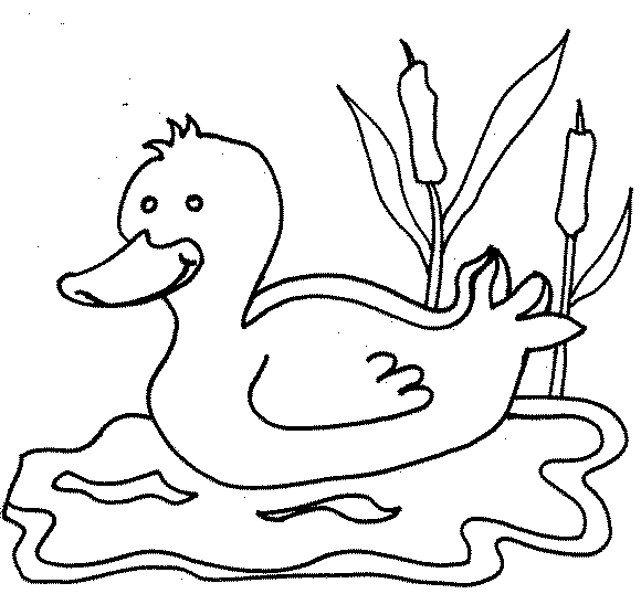 Dibujos De Animales Domesticos Para Colorear E Imprimir