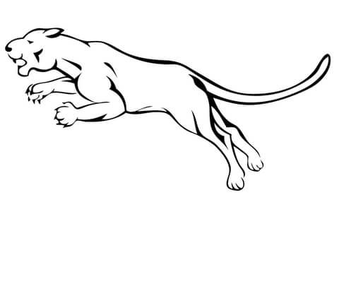 Puma Atacando Dibujo Para Colorear
