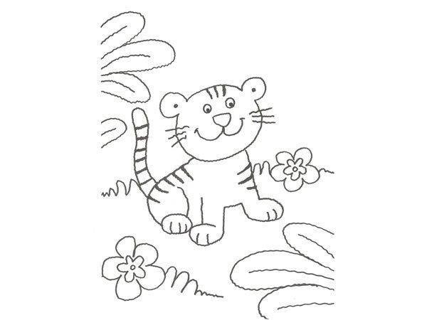 Dibujo De Un Tigre De La Selva Para Colorear Con Niños