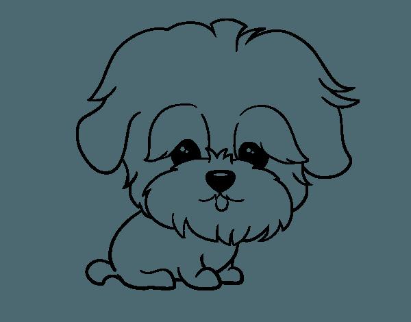 Perro Para Colorear E Imprimir