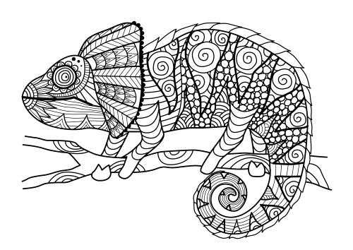 Dibujos De Mandalas De Animales Y Flores Para Colorear