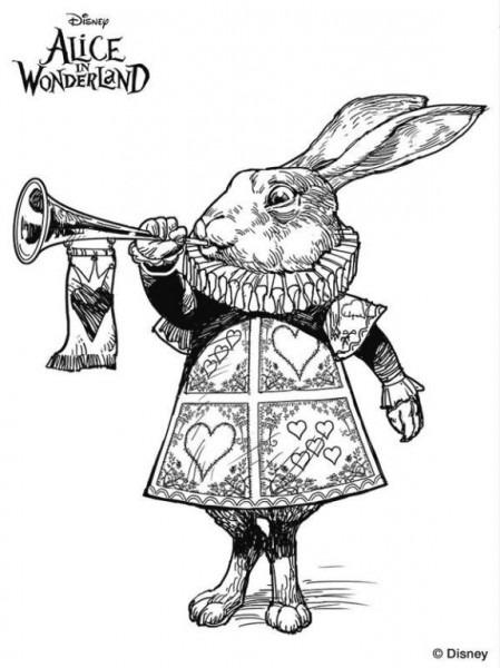 Conejo Pelicula Alicia Tim Burton Dibujos Colorear