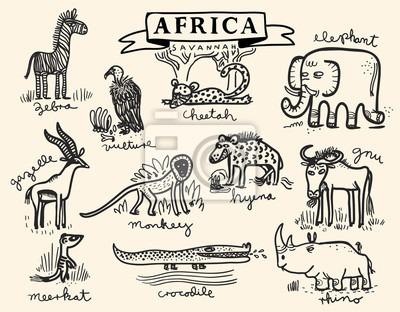 Conjunto De Animales De La Sabana Africana Vinilos Para Portátiles