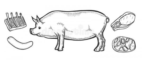 Cortes Del Jamón De La Carne De Cerdo Ilustración Del Vector