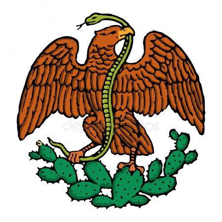ᐈ Aguila Mexicana Imágenes De Stock, Fotos Un Aguila