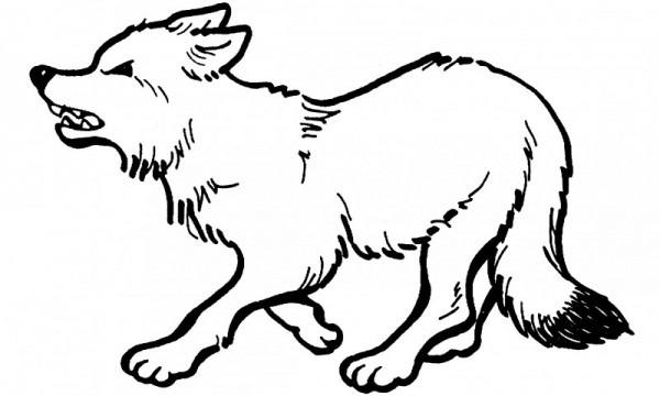 Dibujos De Lobos (para Colorear Y Pintar)