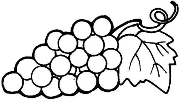 Dibujos Para Pintar Frutas