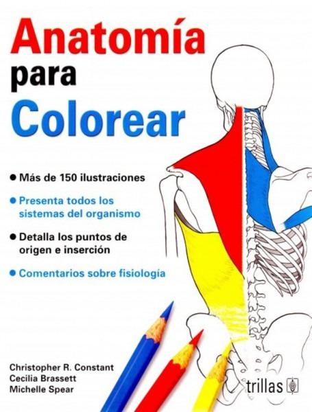 Constant  Anatomia Para Colorear