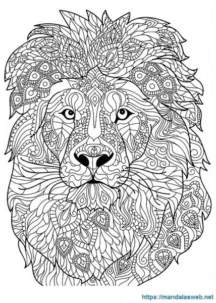 ▷ 31 Mandalas Y Dibujos De Leones Para Colorear 🥇 Mandalasweb Net