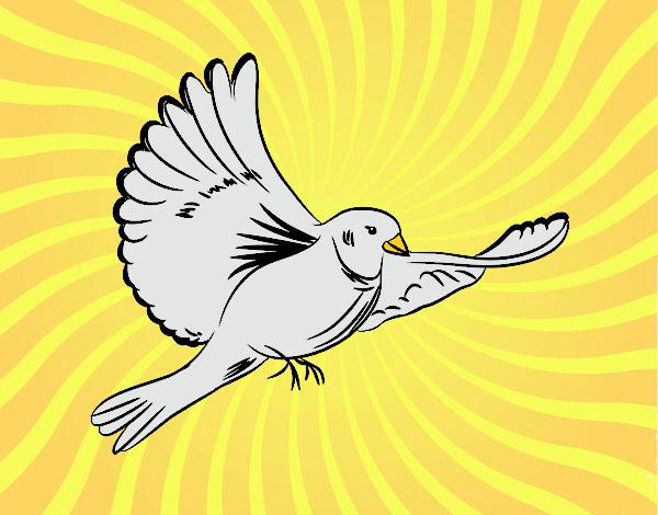 Dibujo De Paloma Volando Pintado Por En Dibujos Net El Día 15
