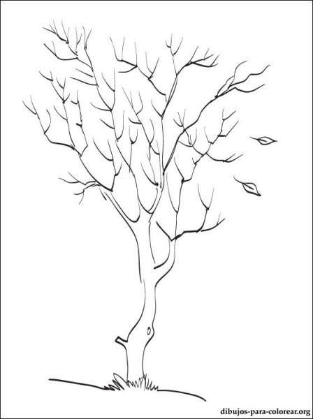Dibujo De árbol De Otoño Para Imprimir
