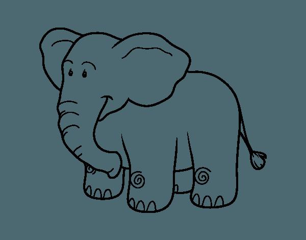 Dibujo De Un Elefante Africano Para Colorear