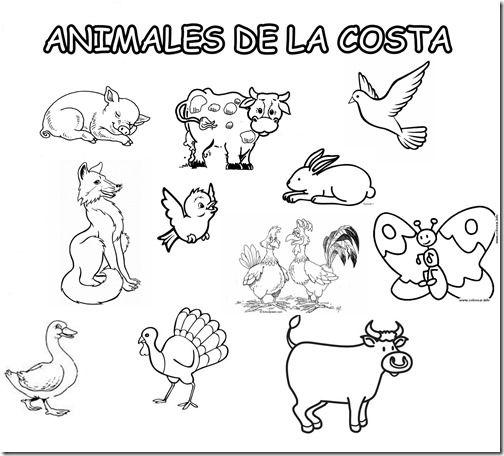 Dibujos De La Costa Del Perú Para Colorear