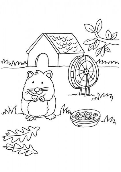 Conejo De India Y Su Casa  Dibujo Para Colorear E Imprimir