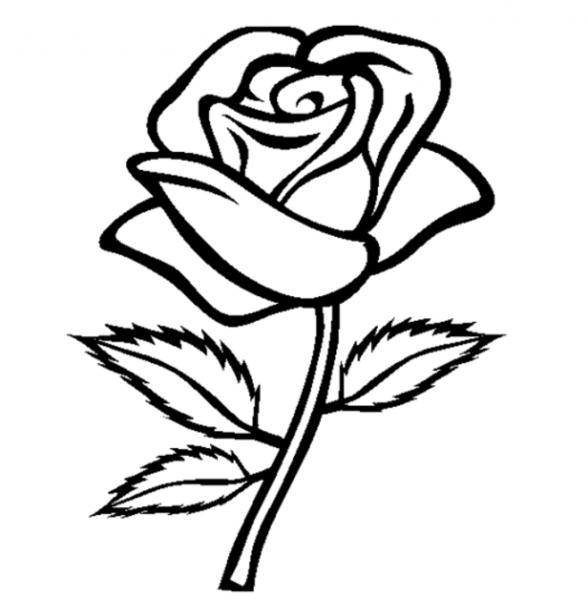 El Mejor Blog Para Chicas  10 Dibujos De Rosas Para Colorear