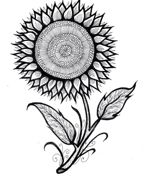 Educación Artística  Dibujos Para Colorear
