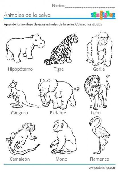 Juegos Con Animales Para Niños